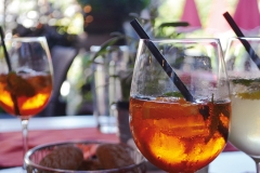 hirsch-garten-drink